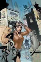 Catwoman 25 Cover Final by TerryDodson