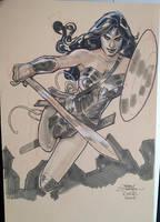 Wonder Woman 2 ECCC 2016 by TerryDodson