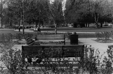 Sleeping in the park by tkfoshori