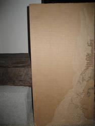 other view, cardboard lady by tkfoshori