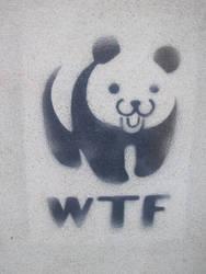 WTF panda by utilizator