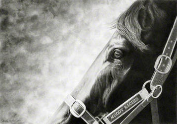 Black Caviar: Intensity by andreamichael