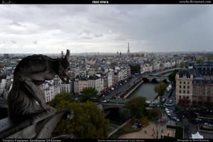 Paris2 by Wess4u