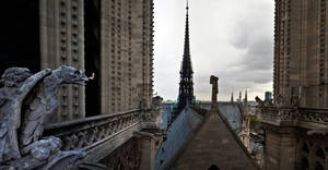 Notre dame 1 panorama by Wess4u