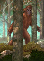 The Sasquatch by allendouglasstudio