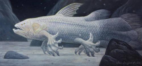Mermaid Evolution- Stage 1 by allendouglasstudio