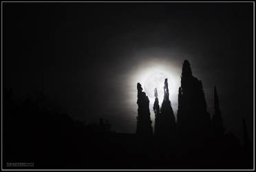 moonrise by salvaterra