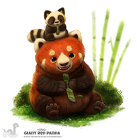 Daily Painting 1702# Giant Red Panda by Cryptid-Creations