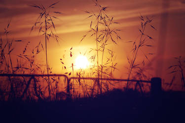 Rural Sunset II by bigbear74