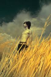 the wind  song II by akuiblis