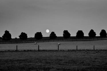 August Full Moon by blink-click