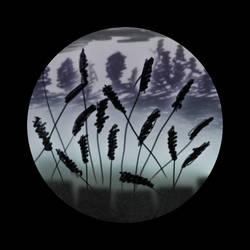 Misty meadows at night by JaBoJa