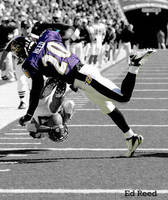 Ed Reed by CollinMcGuire