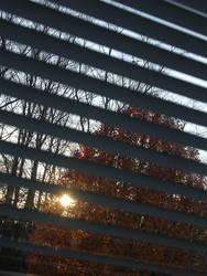 dont you wish it were autumn? by despondentpoplar