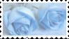 Blue roses - (F2U) by AngelArtzUniverse