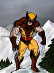 Wolverine by SaintSwan