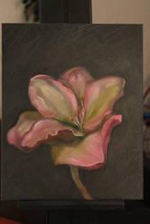 Flower Study by Valerhon