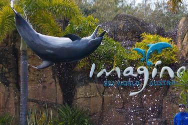 Dolphin Flying 2 by KarlDawson