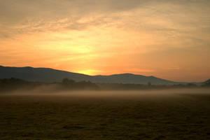 Misty Morning by BenTPhotos