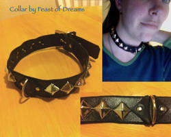 Leather Collar with Pyramids and D ring by theassassinnox