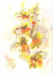 Gladiola by motyl