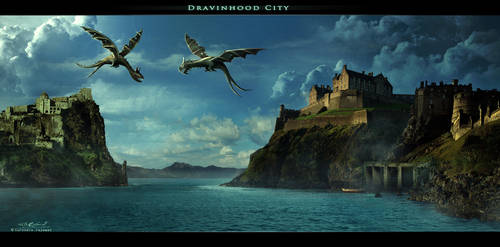 Dravinhood City by surendrarajawat