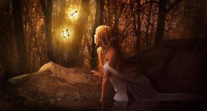 Butterflies by Noir1001