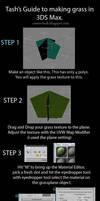 3DS Max Tutorial: Making Grass by tashstrife89