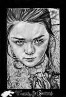 Arya Horseface by Fantaasiatoidab