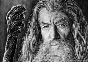 Gandalf the Grey by Fantaasiatoidab