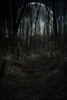 Premade BG Creepy Cemetry1 by Georgina-Gibson
