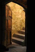 MonsalvatShoot doors2 by gin7gin8 by Georgina-Gibson