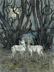 Late night reveals many things. by LiigaKlavina