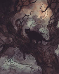 Black cat by LiigaKlavina
