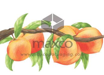 Peaches HD by jobajec