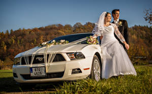 Wedding with mustang by Zavorka