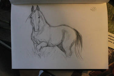Horse Sketch - practive by Peatsouille