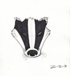 Inktober 2018 Day 20 Badger by Shadowphoenix21