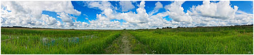 Way to Freedom by PaVet-Photography