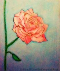 A Single Rose by Edd-The-Werewolf