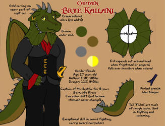 Captain Brye Kailani by Schulo