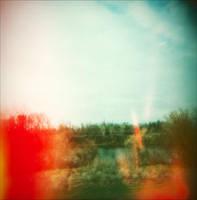 The Light Lies by JillAuville