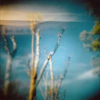 Ash And Bone by JillAuville