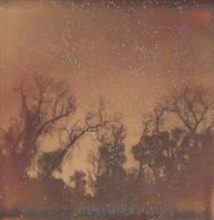 Starry Night by JillAuville