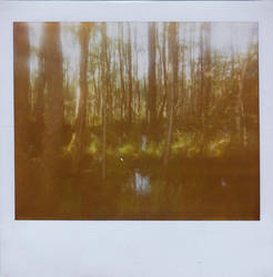 Hidden Places by JillAuville