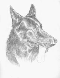 GSDsketch by Caninsector