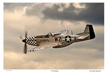 P 51 Mustang by tredowski