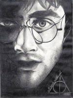 Harry Potter by SimonaBorstnar