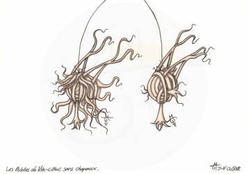 Les Pelotes de Nya-Cthus sans chapeaux by Raanana