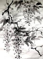 Sumie wistaria by bsshka